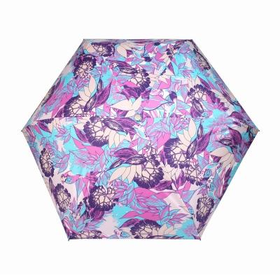 韩美定制 晴雨伞早安小鸟(紫色)【不包邮】
